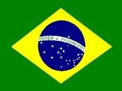 African Mango Brazil