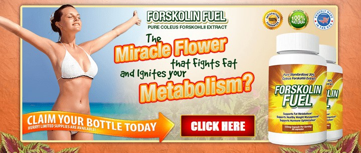 Forskolin Fuel - #1 Supplement with Forskolin Extract