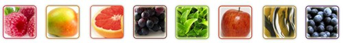Raspberry Ketone Dosage Ingredients