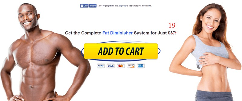fat diminisher system - add to cart