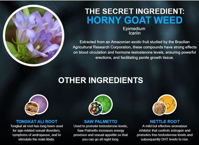 ingredients - horny goat weed
